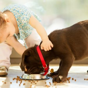 How Dogs Help Build a Child's Character