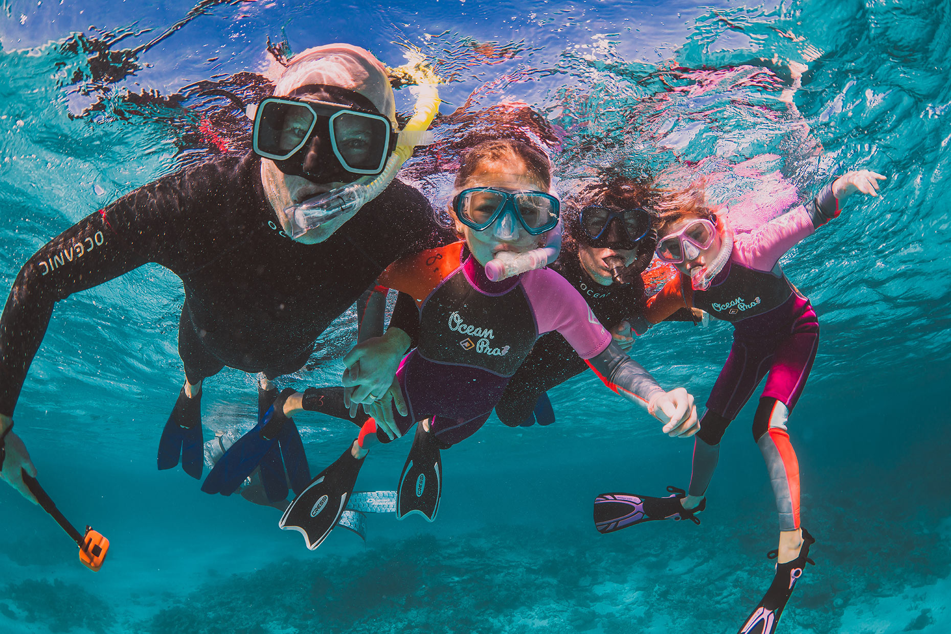 Wanna Try Night Snorkeling in Bunaken? Here The Guide