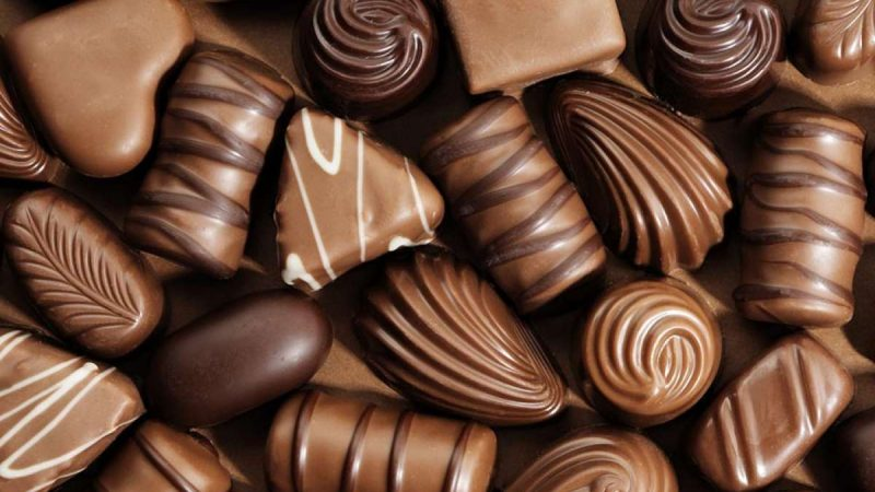 Why Camel Milk Chocolate Gaining Recognition Around the Globe?